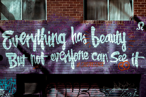everything has beauty but not everyone can see it.